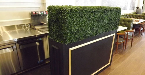 artificial-hedging-in-the-restaurant