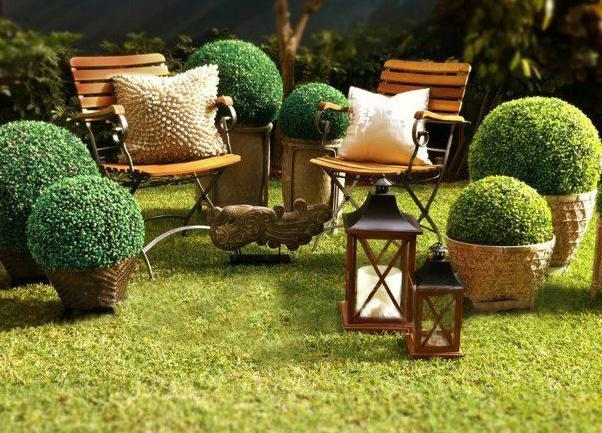 Take cute leafy topiary balls for residential or commercial landscape