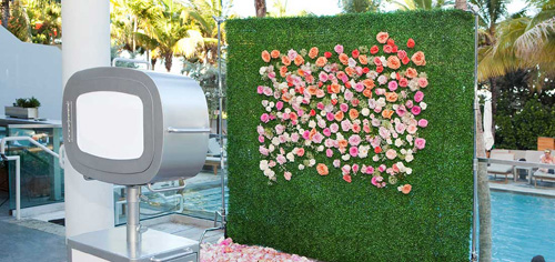 Best wedding backdrop, flower backdrop or evergreen foliage screen?