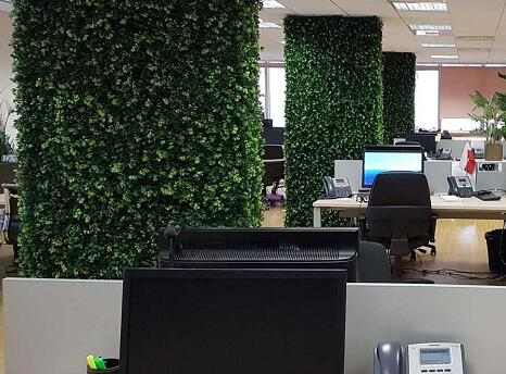 Office decorations Buyer's show with Artificial hedges