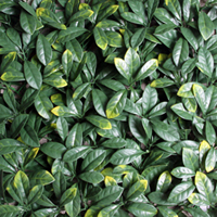 Artificial Landscape Leaves Hedge G0602A003